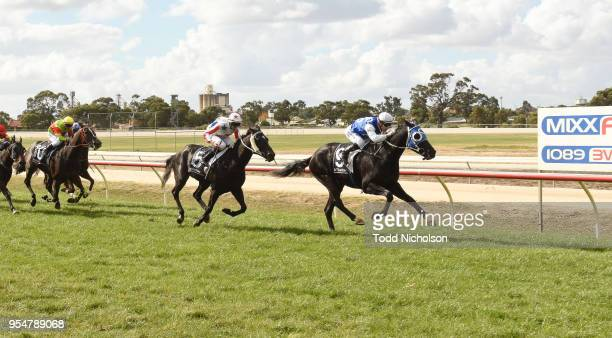 Archway to Heaven ridden by Stan Tsaikos wins the Save The Date Sun Oct 21st 0 58 Handicap at Horsham Racecourse on May 05 2018 in Horsham Australia