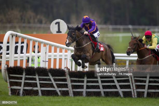 Arctic Fire ridden by Ruby Walsh wins The Star Best For Racing Coverage Novice Hurdle during day four of the Punchestown Festival at Punchestown...