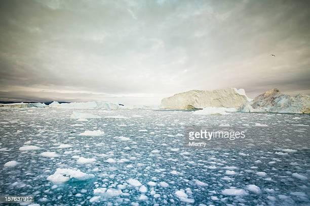 Arctic Icebergs Ilulissat Groenland
