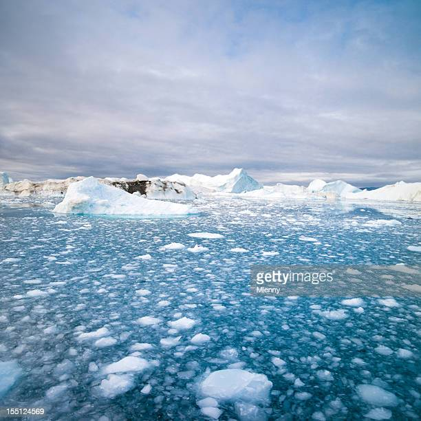 Artic Icebergs Noroeste da Gronelândia