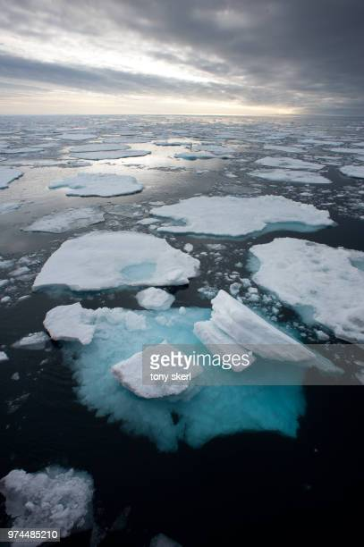 arctic landscape, arctic - ice floe stock pictures, royalty-free photos & images