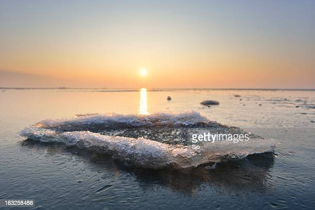 北極の景色