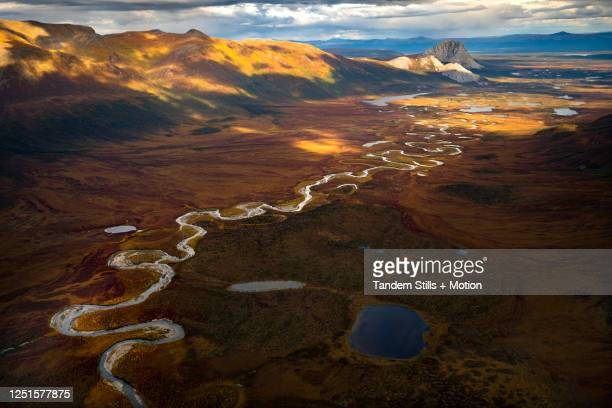 arctic national wildlife refuge, alaska - parco nazionale foto e immagini stock