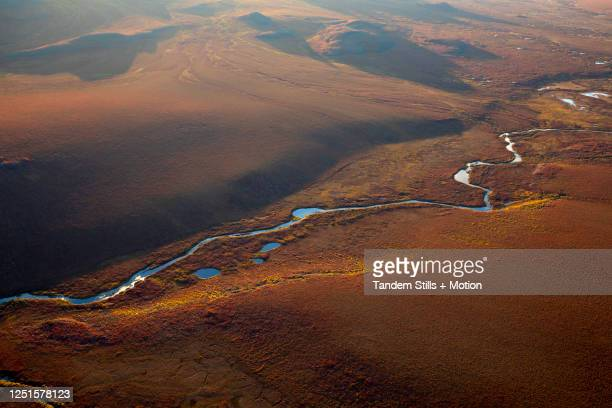 arctic national wildlife refuge, alaska - 国立野生生物保護区 ストックフォトと画像