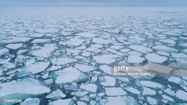 arctic sea ice edge. fram strait. pack ice in the arctic - pack ice stock pictures, royalty-free photos & images