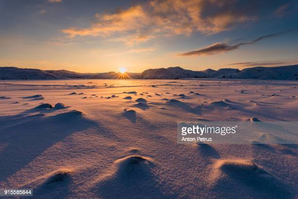 Arctic tundra at sunset