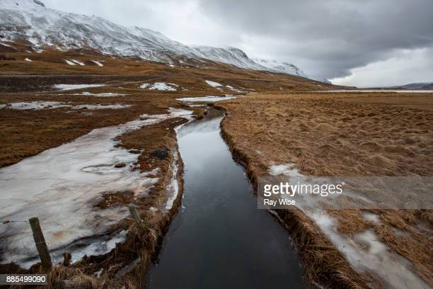 Arctic tundra in Iceland