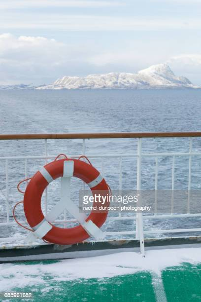 Arctic View