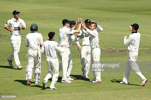 Arcy Short of Western Australia celebrates the wicket of Ben Dunk of Tasmania during day four of the Sheffield Shield match between Western Australia...