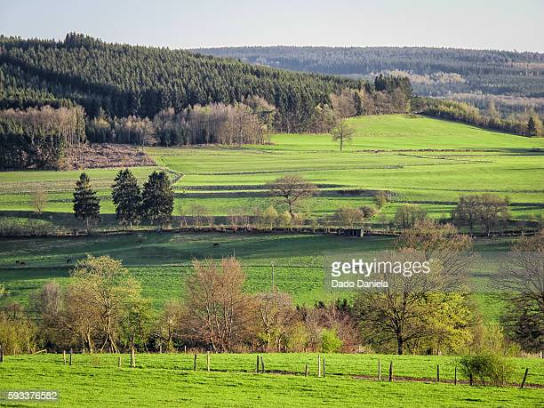ardennes landscape - spa belgium stock pictures, royalty-free photos & images