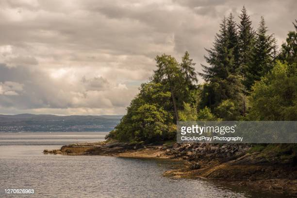 ardentinny headland - strathclyde stock pictures, royalty-free photos & images
