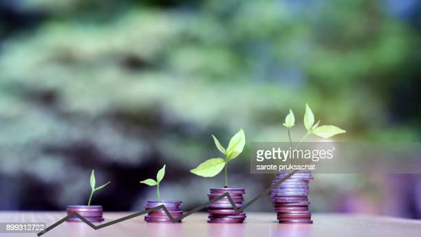 are grow up on coins stack for money saving and green natural background for investment financial concept
