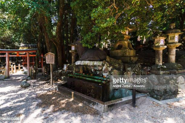 area around famous Kasuga Taisha, Shrine, in Japan during summer