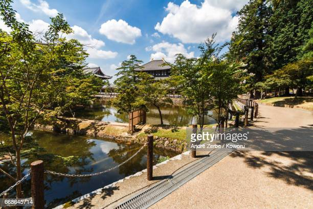 area around famous todaiji temple, in japan during summer - baum stock pictures, royalty-free photos & images