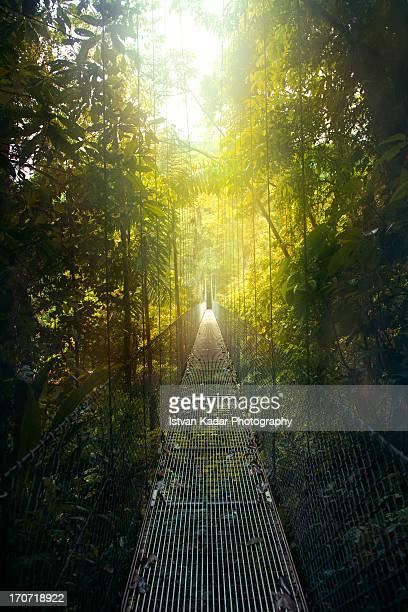 Arenal Hanging Bridges in Costa Rica