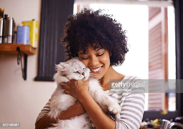aren't you so cute! - persian stock photos and pictures