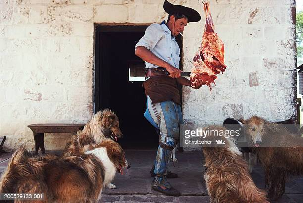 Argentina, gaucho cutting meat for dogs on ranch