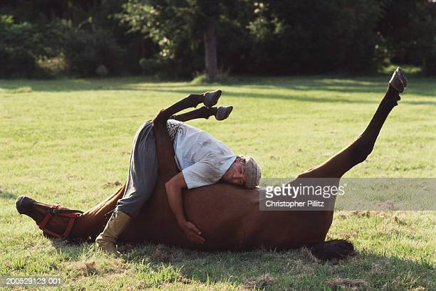 Argentina, gaucho embracing horse rolling in field