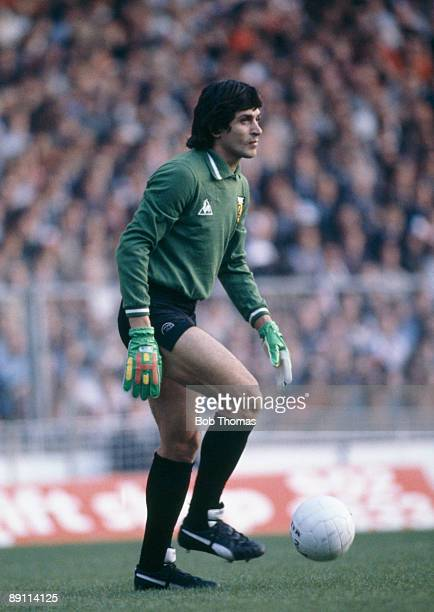 Argentina goalkeeper Ubaldo Fillol in action during the match against England at Wembley Stadium London 13th May 1980