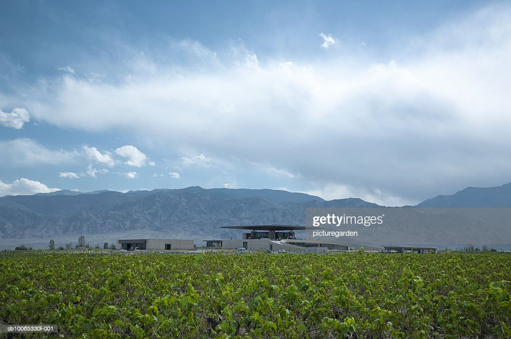 Argentina, Mendoza, Andean Mountain Range, Valle de Uko, buildings of Bodegas O Fournier : Foto stock