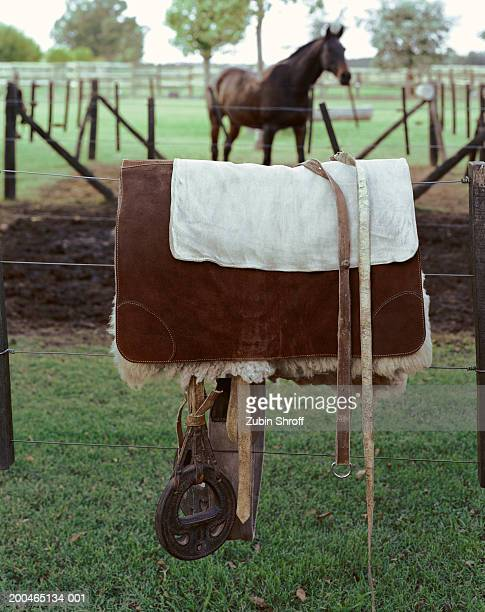 Argentina, near Buenos Aires, traditional gaucho saddle on polo ranch