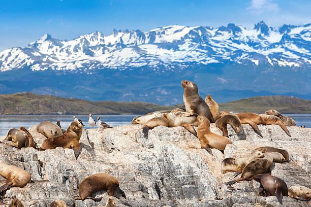 Ushuaia, Argentina Ushuaia, Argentina