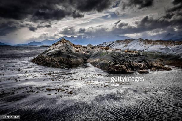 Beagle Channel Stormy sky above the rocks