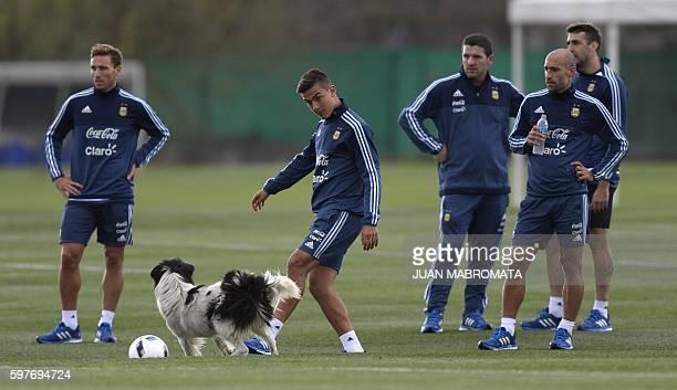 Argentina's forward Paulo Dybala kicks the ball to play with a dog next to teammates midfielder Lucas Biglia defender Pablo Zabaleta and forward...