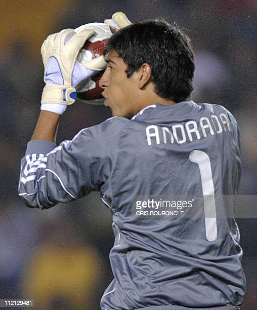 Argentina's goalkeeper Esteban Andrada stops the ball against Brazil during a finalround match of the Under20 South American championship at the...
