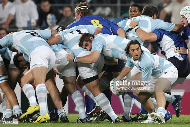 Argentina's scrum-half Agustin Pichot prepares to pass the ball during the rugby union World cup match Argentina vs. Namibia, 22 September 2007 at...