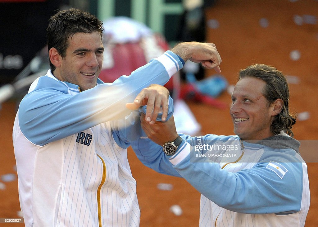 Argentina's tennis player Juan Martin De : News Photo