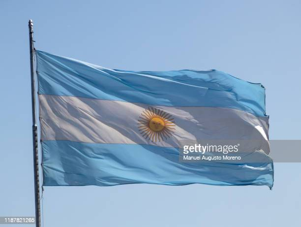 argentine flag - bandera argentina fotografías e imágenes de stock