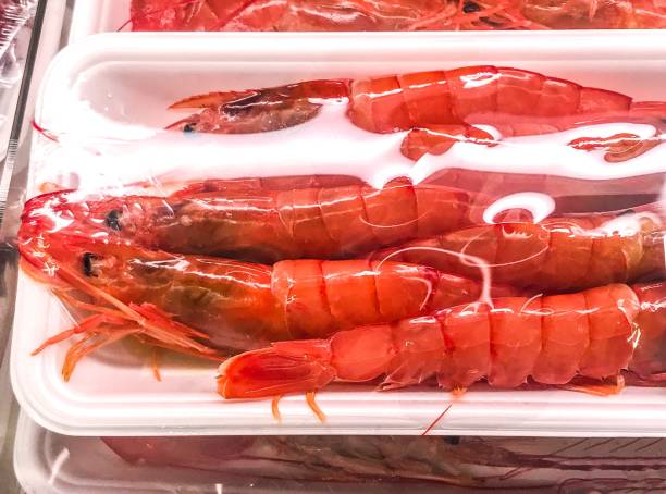 Argentine red shrimp: Pleoticus muelleri (Bate, 1888)
