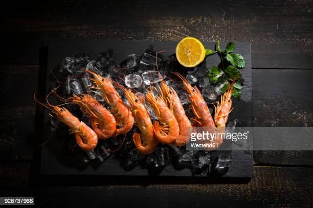argentine red shrimps on ice - 車海老料理 ストックフォトと画像