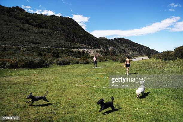 Argentines and their dogs relax on a warm spring day where temperatures hit a daily record of 66 degrees Farenheit on November 6 2017 in Ushuaia...