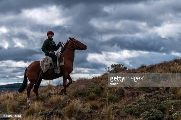 argentinian cowboy gaucho in patagonia - cultura argentina imagens e fotografias de stock