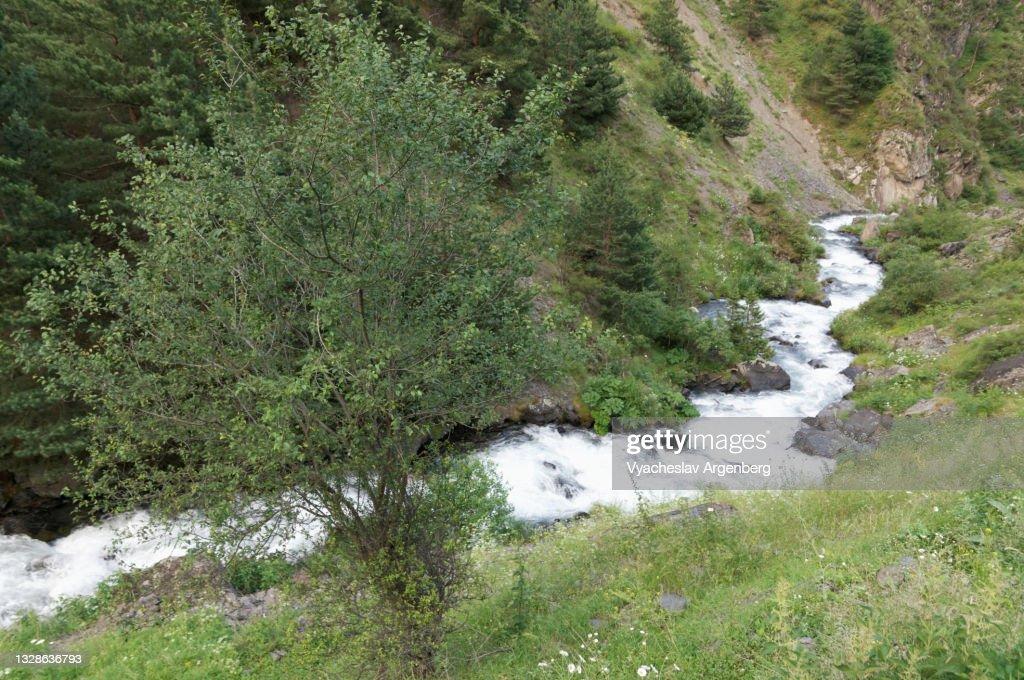 Argun River, North Caucasus Mountains, Georgia : Stock Photo