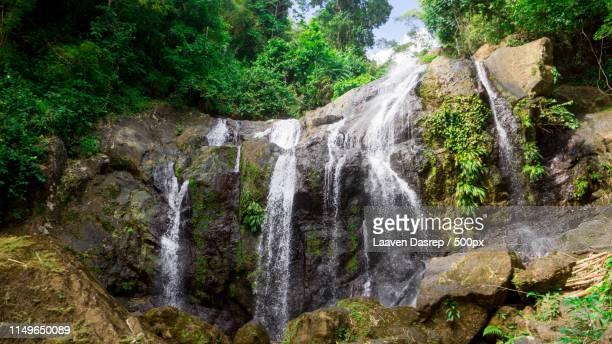 argyle waterfall tobago - アーガイル模様 ストックフォトと画像
