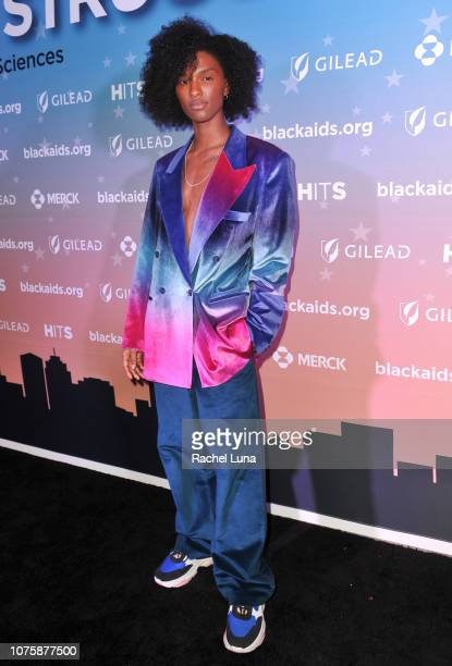 Ari Fitz attends the Black AIDS Institute's 2018 Heroes in The Struggle Gala at California African American Museum on December 01 2018 in Los Angeles...