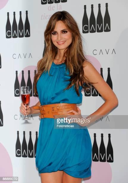 Ariadne Artiles attends Cava Rosado cocktail party, at Villa Magna Hotel on July 7, 2009 in Madrid, Spain.