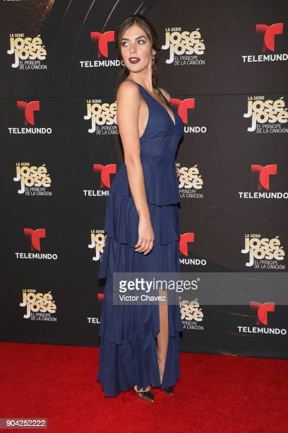 Ariana Ron Pedrique attends the 'Jose Jose El Principe De La Cancion' Telemundo tv series premiere at Four Seasons hotel on January 11 2018 in Mexico...