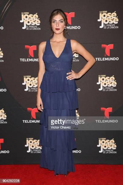 Ariana Ron Pedrique attends the 'Jose Jose El Principe De La Cancion' Telemundo tv series premiere at Four Seasons hotel on January 11 2018 in Mexico...