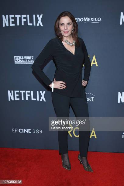 Ariane Pellicer poses for photos during the red carpet and screening of Alfonso Cuaron and Netflix's film 'Roma' at Cineteca National on November 21...