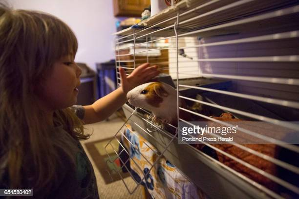 Arianna and her pet guinea pig Rocket at her apartment
