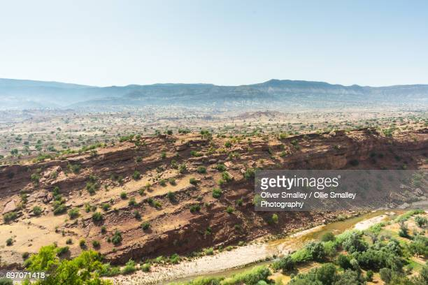 arid lands and argan trees - argana valley, morocco - argan tree stock pictures, royalty-free photos & images