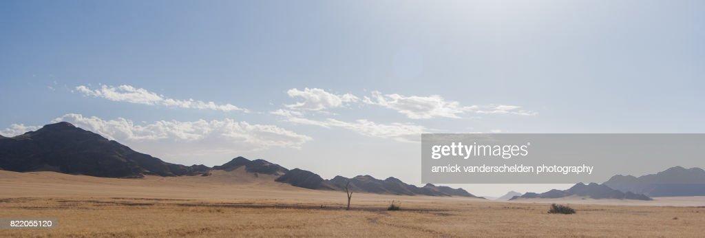 Arid landscape in Sesriem area in Namibia. : Stock Photo
