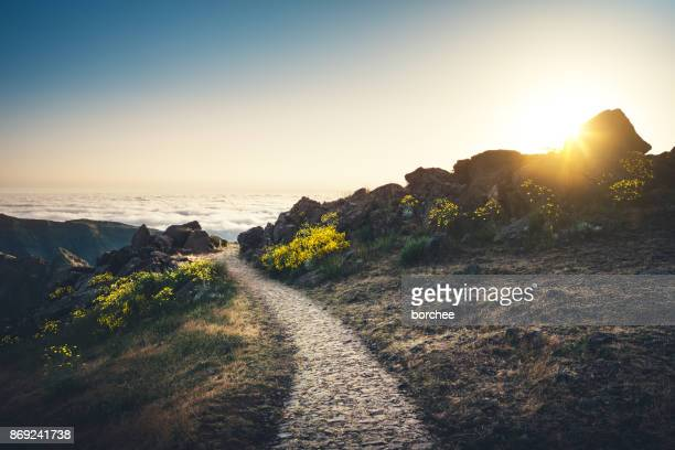 pico de arieiro on madeira island - morning stock pictures, royalty-free photos & images