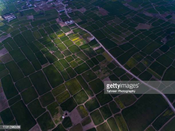 ariel view of agriculture fields and road - harlequins stock pictures, royalty-free photos & images