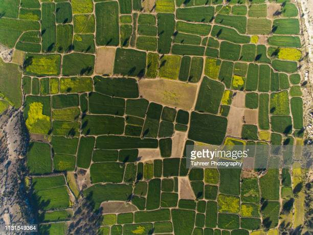 ariel view of fields - natural pattern stock pictures, royalty-free photos & images
