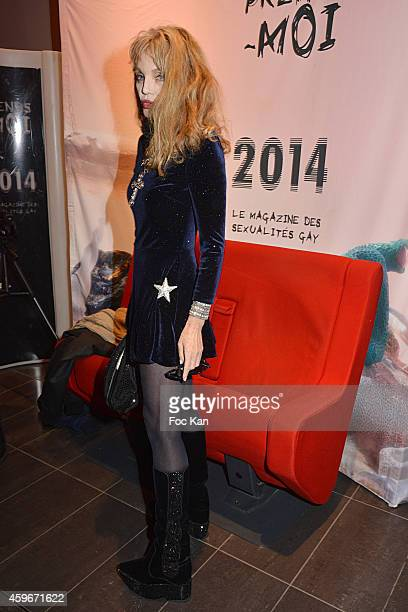 Arielle Dombasle attends the 'Soiree Arielle Dombasle' At Cheries Cheris LGBT 20th Festival At MK2 Bibliotheque on November 27